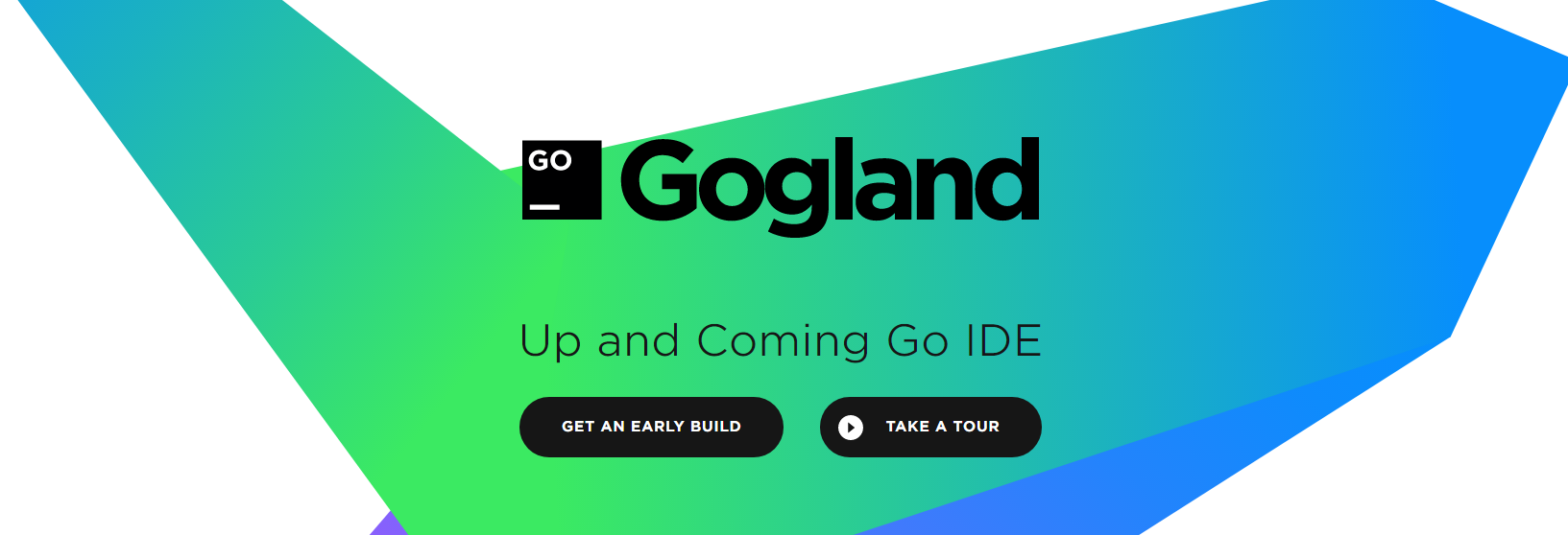 Golang IDE Gogland